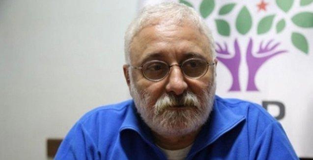 HDP'li Saruhan Oluç: Erken seçim doğru değil