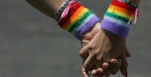 Hollanda'da 'eşcinsel evlilik turizmi'ne destek önerisi