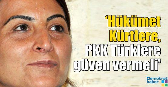 'Hükümet Kürtlere, PKK Türklere güven vermeli'