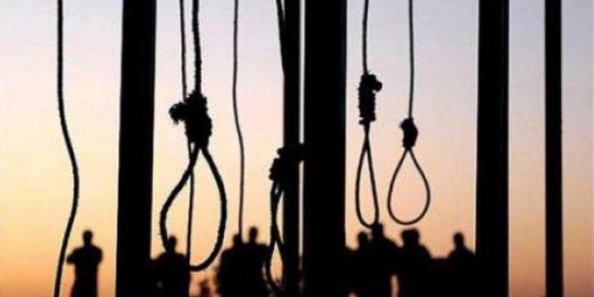 İHD: İdam cezasının gündeme getirilmesi AKP manipülasyonudur