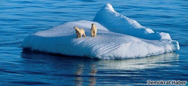 İklim değişikliği bazı türlerin evrimini engelleyebilir