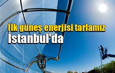 İlk güneş enerjisi tarlası İstanbul'da