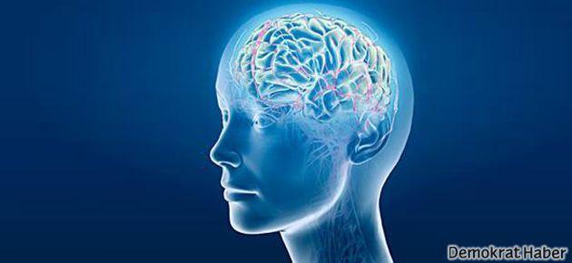 İnsan beyninin sesi kaydedildi