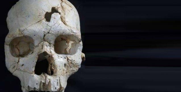 İnsanın insana şiddetinin 430 bin yıllık izi
