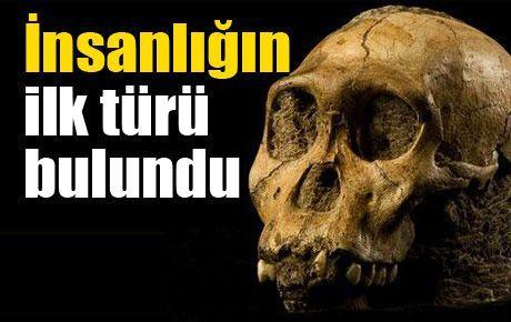 İnsanlığın ilk türü bulundu
