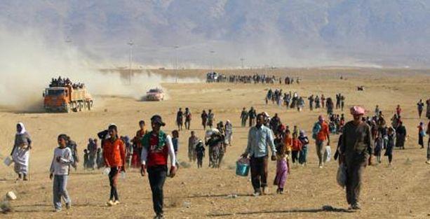 'IŞİD Irak'ın kuzeyinde etnik temizlik yapıyor'