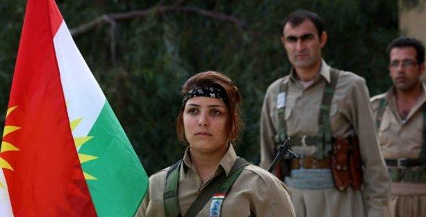 'IŞİD'le çatışmalarda 727 peşmerge öldü'