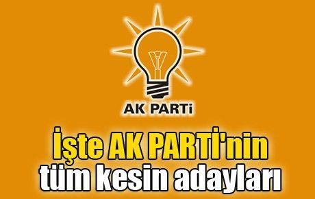 İşte AK Parti milletvekili aday listesi