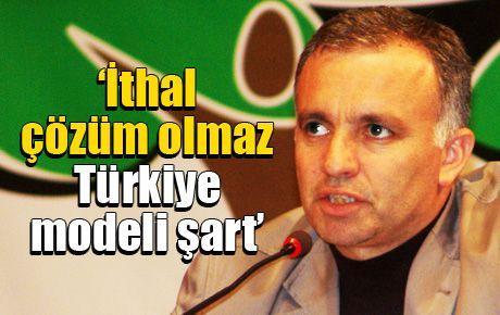 'İthal çözüm olmaz Türkiye modeli şart'