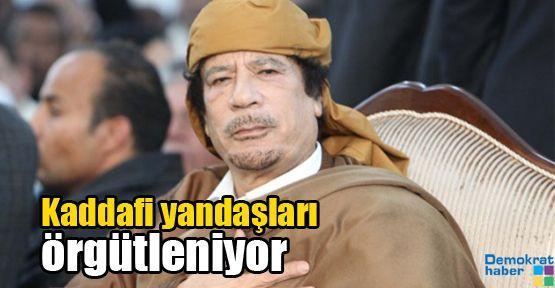 Kaddafi yandaşları örgütleniyor
