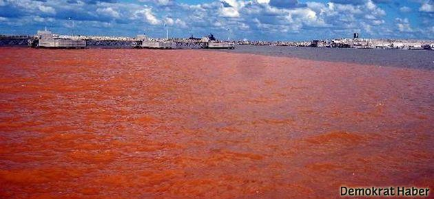 Karadeniz, Kızıldeniz'e dönüştü