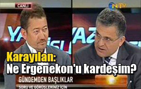 Karayılan: Ne Ergenekon'u kardeşim?