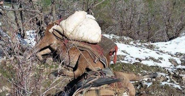 Katırları öldürülen Roboski halkı: Artık sabrımız kalmadı
