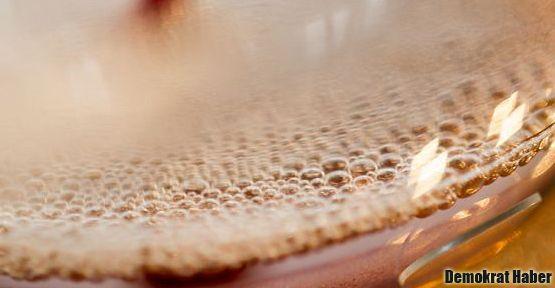Kimyasal maddeyi som altına çeviren bakteri