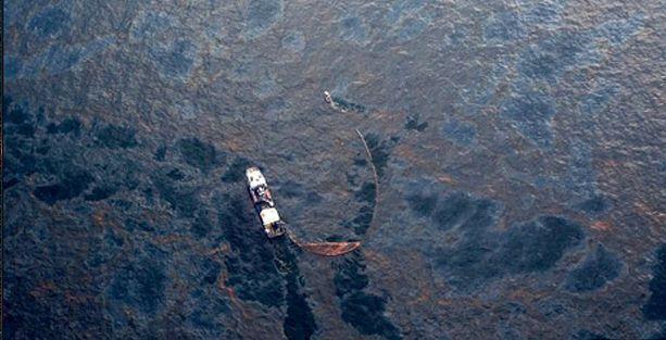 Körfezdeki çevre felaketi BP'nin ihmali