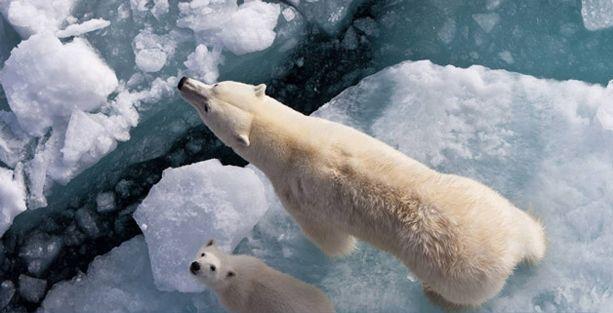 Küresel ısı artışında yavaşlama dönemi