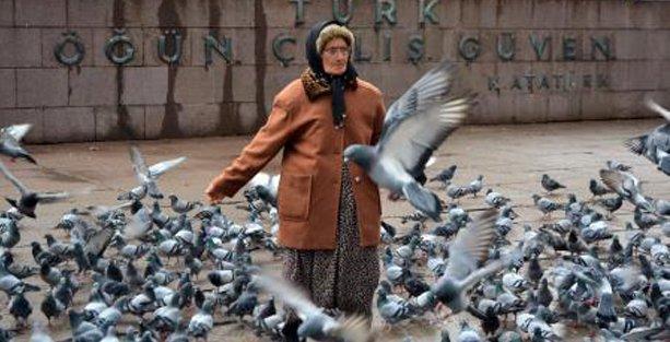 Kuşyemi satan yaşlı kadını bugün de parktan attılar