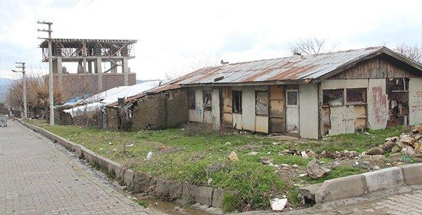 Lice'li depremzedeler devletten umudu kesti