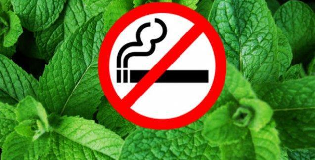 Mentollü sigara ve meyveli nargile piyasadan kaldırılıyor