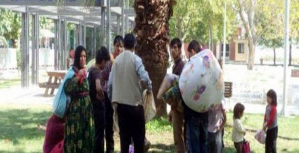 Mudanya Belediyesi Suriyelileri ilçe dışına attı