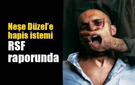 Neşe Düzel'e hapis istemi RSF raporunda