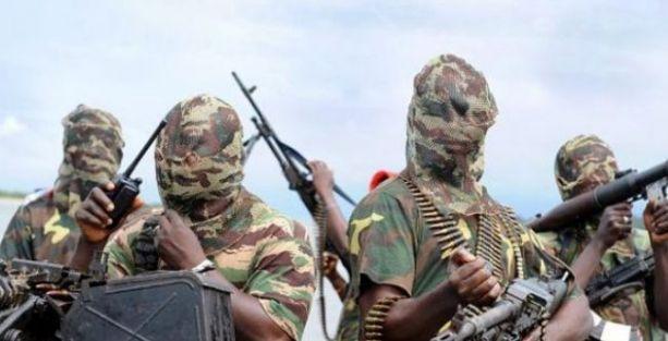 Nijer'de binlerin katıldığı 'Boko Haram haramdır' eylemi