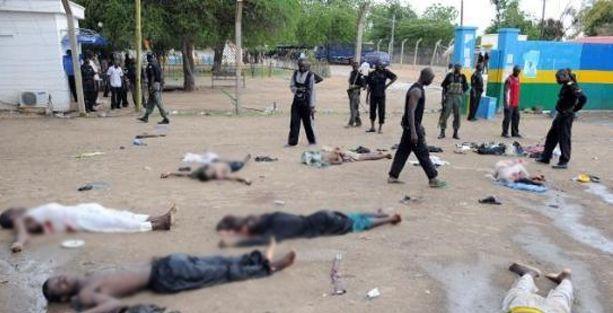 Niyerya'ya işkence suçlaması