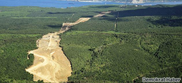 Orman Kanunu'nda 10 yılda 10 değişiklik!