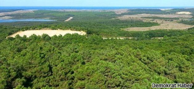 Ormanlık alanları işletmelere açan kanuna iptal davası