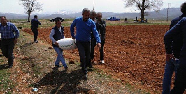 Ovacık'ta 'tarım devrimi': Hazine arazisine ekilen ürünler yoksullara dağıtılacak