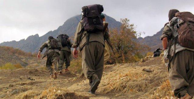PKK 'küçüksünüz' diyerek evlerine gönderdi, devlet dava açtı