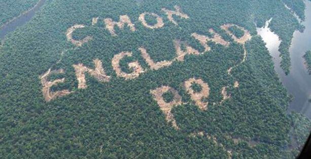 Reklam için ağaç katliamı yaptılar