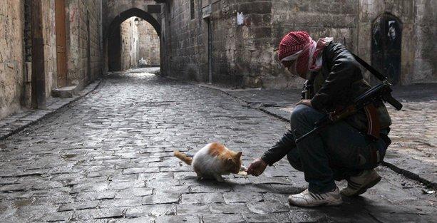 Suriye'den 4 yıl sonra 'hayati' haber
