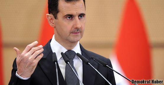 Suriye'den zeytin dalı