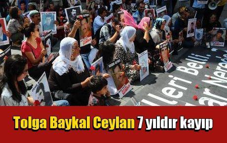 Tolga Baykal Ceylan nerede?