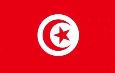 Tunus'ta muhaliflere bakanlık verilecek
