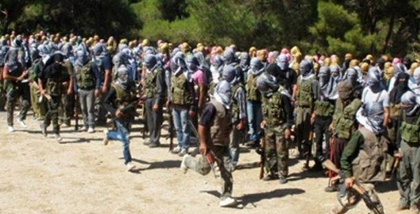 'Türkiye ve Suriye Kürtleri IŞİD'e karşı birleşti'