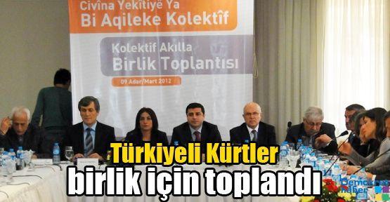 Türkiyeli Kürtler birlik için toplandı
