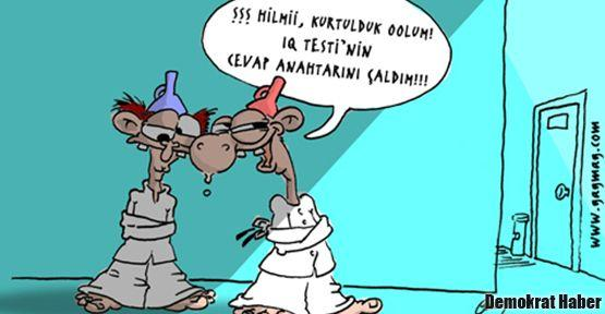 Türkiye'nin IQ'su artıyor mu, düşüyor mu?