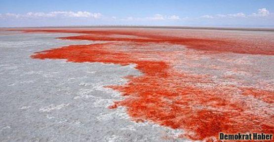 Tuz gölü için kırmızı alarm