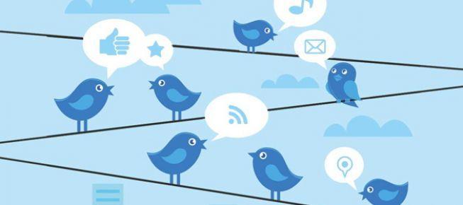 Twitter'a DNS engeli
