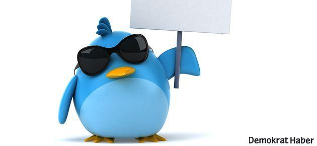 Twitter'da kuşların yarısı ötmüyor