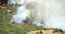 Dersim'de orman yangını yayılıyor