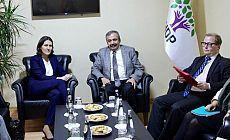 AP Türkiye Raportörü Kati Piri'den HDP'ye ziyaret
