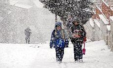 Van'da 1 günlük kar tatili