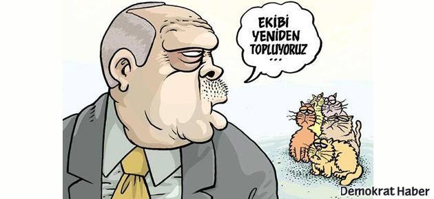 Uykusuz'da Erdoğan kedilere çağrı yapıyor
