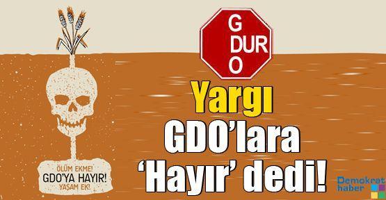 Yargı GDO'lara 'Hayır' dedi!