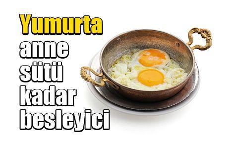 Yumurta anne sütü kadar besleyici